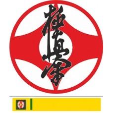 Видео-курс Каратэ: Бункай Кёкусинкай-3 (6-й и 5-й кю)