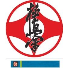 Видео-курс Каратэ: Бункай Кёкусинкай-2 (8-й и 7-й кю)